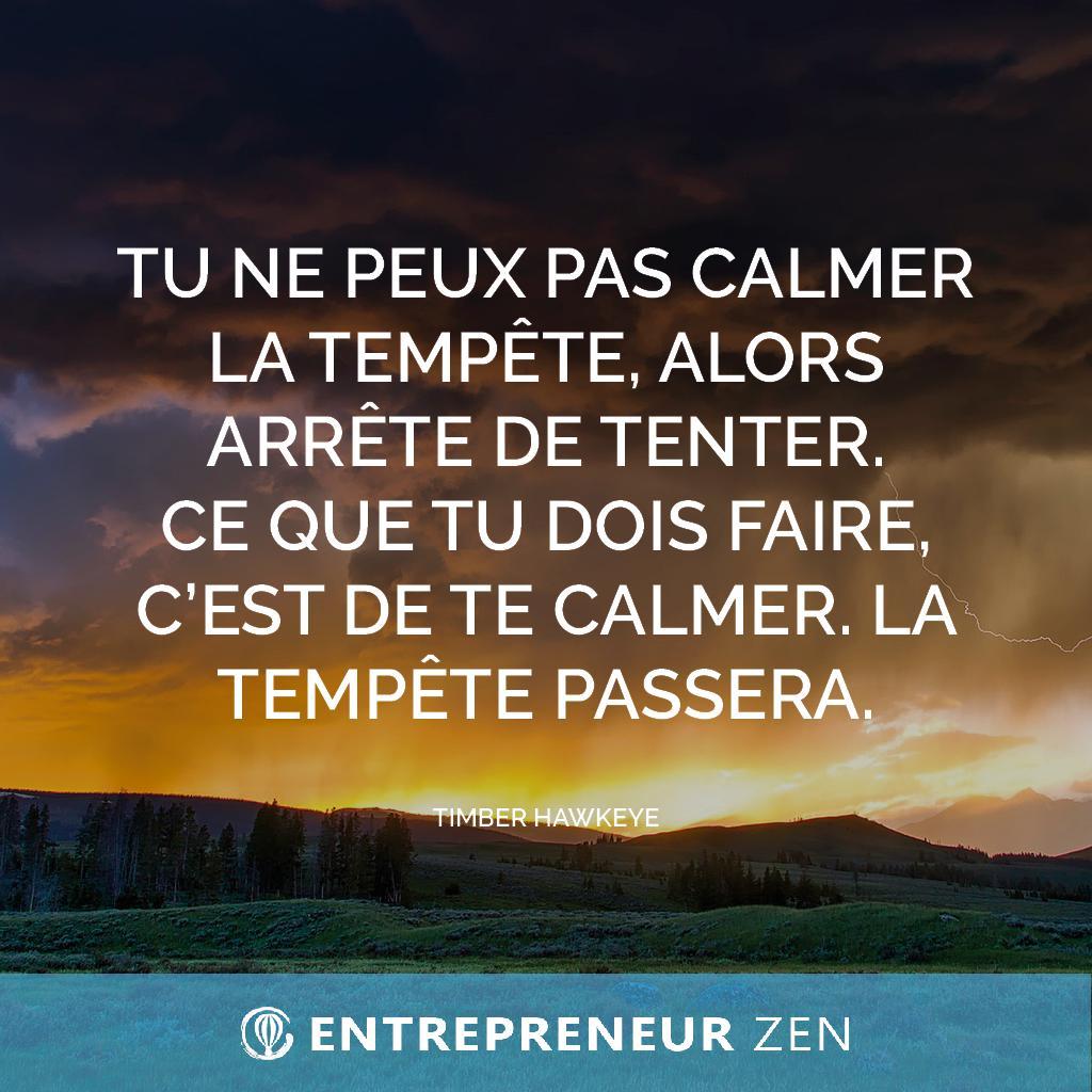 Tu ne peux pas calmer la tempête, alors arrête de tenter. Ce que tu dois faire, c'est de te calmer. La tempête passera - Timber Hawkeye